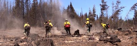 Smoke rises near five wildland firefighters working to put out remnants of a fire in an open space amongst trees.